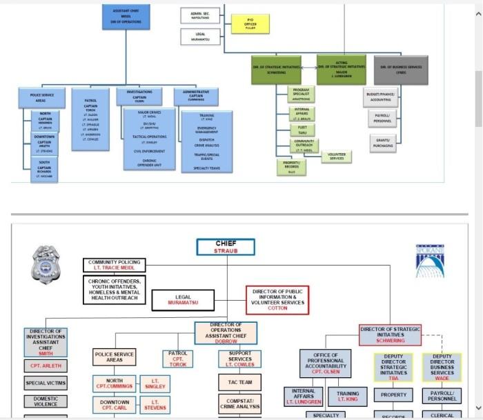 my-clar-org-chart-2
