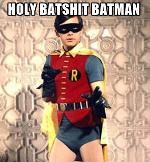 holy-batman-holy-batshit-batman